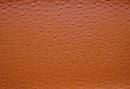 Алиена f6321309 orange